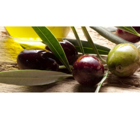 Оливки або маслини. У чому різниця?